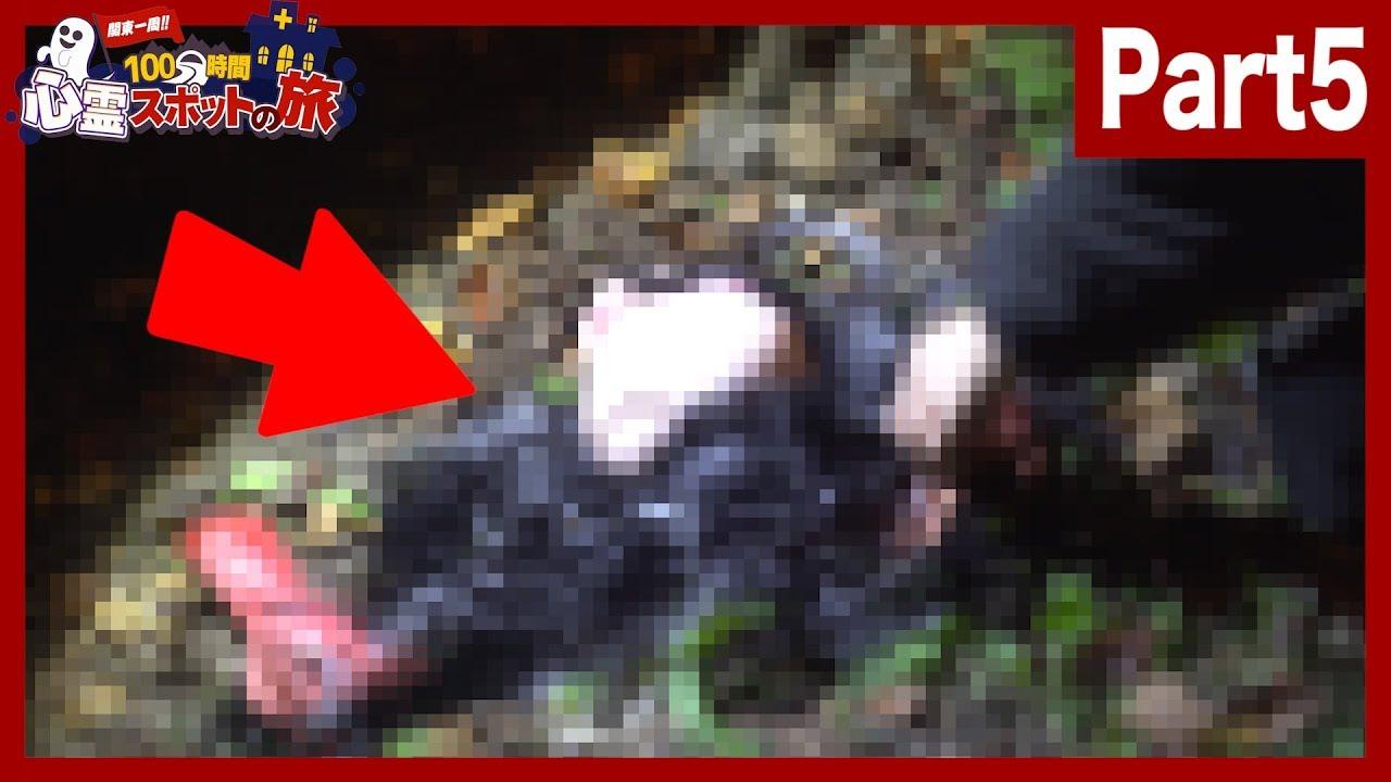 【削除覚悟】山奥の心霊スポットでバラバラ死体の第一発見者になってしまった…。#5【100時間心霊スポット生活】